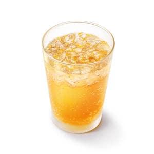 瀬戸内産ネーブル&レモンジンジャーエール(ネーブル果汁0.4%、レモン果汁0.2%使用) Mサイズ