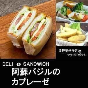 【1109a】バジルカプレーゼ&温野菜サラダ