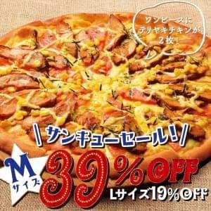 〈Mサイズ1400円 Lサイズ2660円〉WテリヤキDX Mサイズ