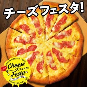 〈Mサイズ1620円 Lサイズ2700円〉パルミジャーノ・レッジャーノと熟成サラミ Mサイズ