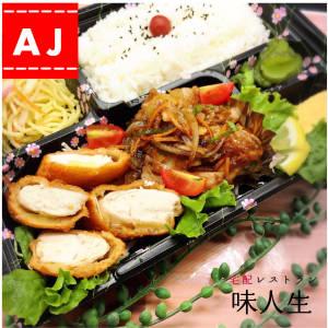 【573】えらべる!好きなおかず二種類!お弁当bento