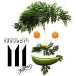 ベジタブルイタリアンyakumo111