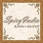Spicy India 宮前平店