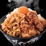 【スタミナ特集】豪快!唐揚げ合盛りすた丼