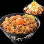 すた丼+ミニすた唐サラダセット