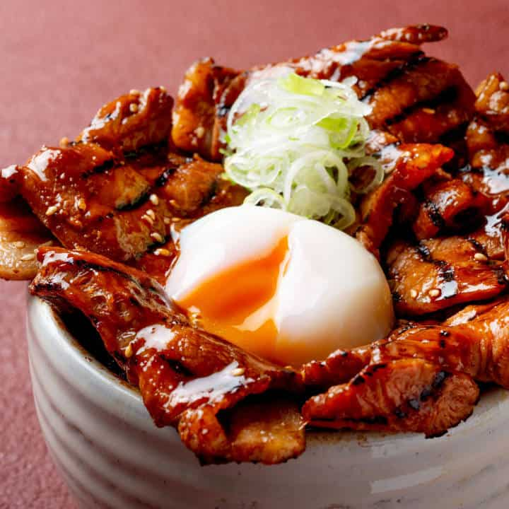 十勝帯広豚丼 三代目ぶた広 守口・門真店